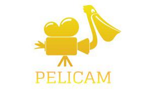 pelicam 3
